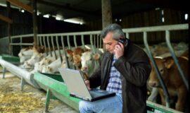 Aides aux investissements dans les exploitations agricoles du Grand Est