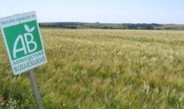 Investissements productifs et non productifs pour des enjeux environnementaux dans les exploitations agricoles