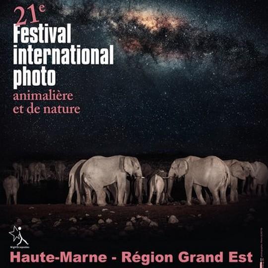 Festival International de la Photo Animalière et de Nature