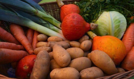 Séance plénière du 20 octobre 2017 : Horticulture et fruits et légumes du Grand Est
