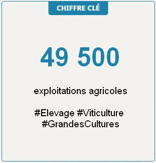 Chiffre-clé : 49500 exploitations agricoles en Grand Est