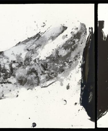Exposition «La lumière des arbres» de Christian Lapie
