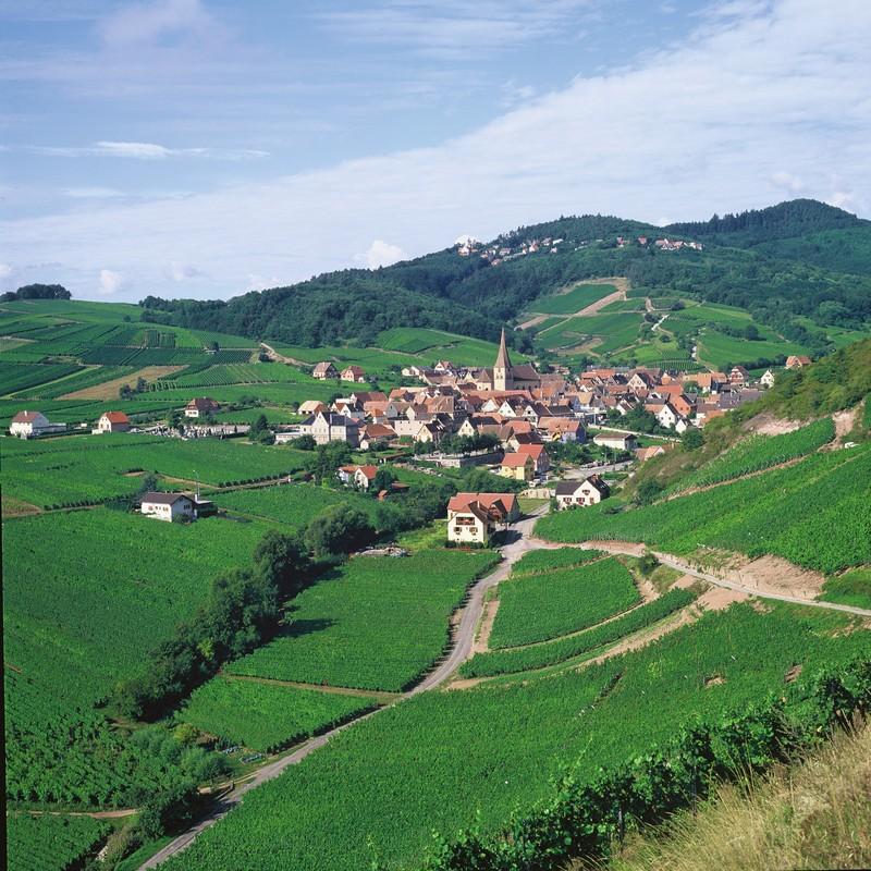 Le petit village de Nierdermorschwihr entouré de vignobles, près de Colmar et situé sur la Route des Vins © DUMOULIN