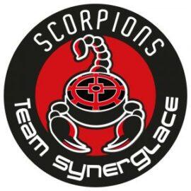 Hockey sur glace : Scorpions de Mulhouse contre Angers