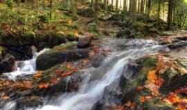 Investissements liés à la reconquête de l'eau – Champagne-Ardenne