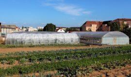 Investissements relatifs à la diversification des productions agricoles – Champagne-Ardenne