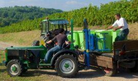 Soutenir et développer les filières bois et viticulture