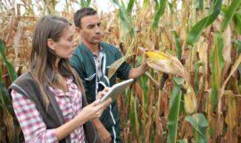 Appel à candidatures : agrément pour l'Accompagnement à l'Installation – Transmission en Agriculture (AITA)