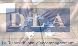 Dispositif Local d'Accompagnement (DLA) pour les structures relevant de l'Economie Sociale et Solidaire