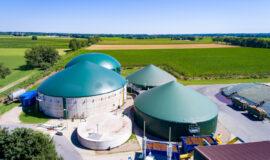 Développer la bioéconomie dans le Grand Est