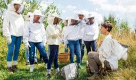 Programme régional « Visites écotouristiques 2020 »