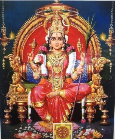 Navaratri / Durga Puja