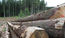 Création ou réhabilitation de place de stockage de bois et au maintien du stockage