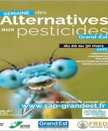 Semaine des alternatives aux pesticides Grand Est