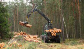 Aide aux entreprises de travaux forestiers